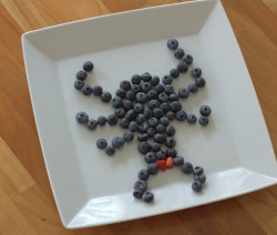 Blackberry fruit spider